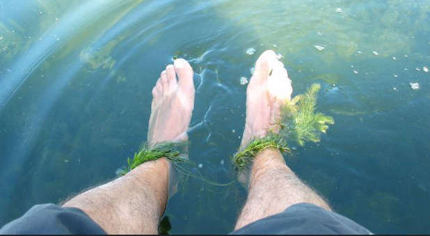 Take a break from all of your concerns just by dangling your feet in the water.